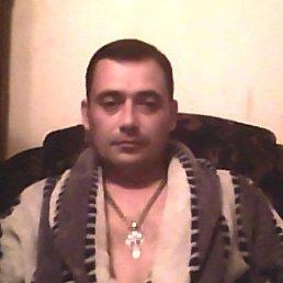 Дмитрий, 40 лет, Саратов