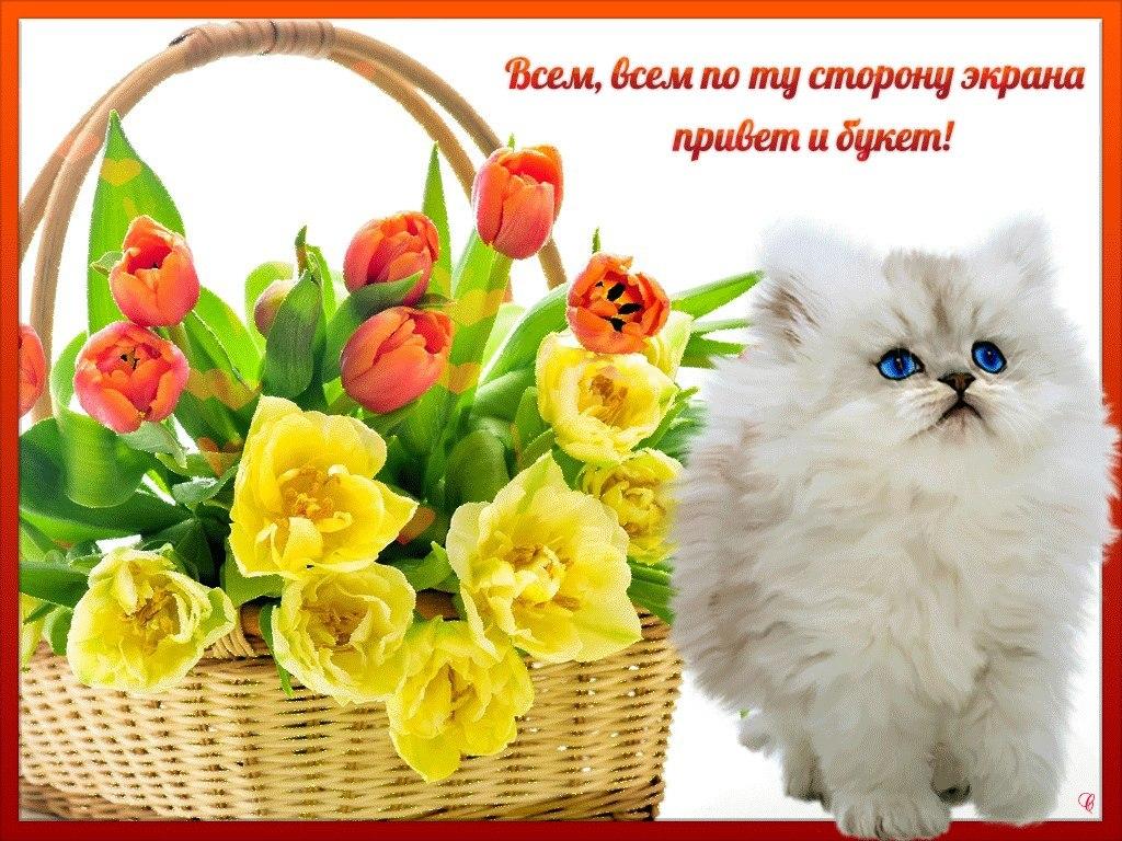Открытки с приветствием и пожеланием хорошего дня женщине