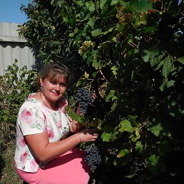 Елена, 38 лет, Воронеж
