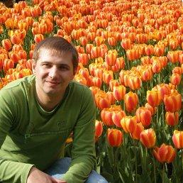 Михо, 36 лет, Терновка