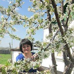 Альбина, 53 года, Гуково