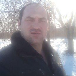Евгений, 37 лет, Волгоград