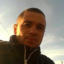 Саша, 34 года, Изюм