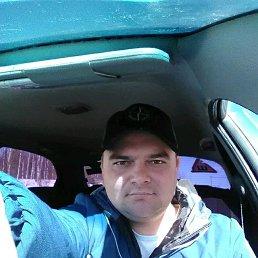 Илья, Полазна, 28 лет