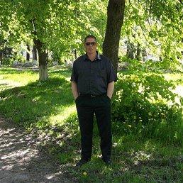 Ярослав, 41 год, Калининград