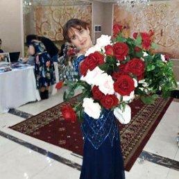 Светлана, 30 лет, Барнаул