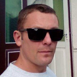 Андрей, 34 года, Сокиряны