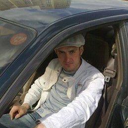 Андрей, Новосибирск, 37 лет