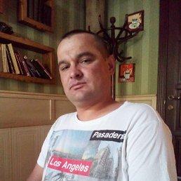 Константин, 40 лет, Кременчуг