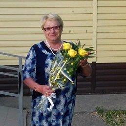 Галченок, 64 года, Свободный