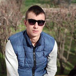 Андрей, 24 года, Новоград-Волынский