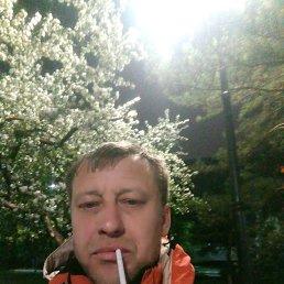 Игорь, 43 года, Омск
