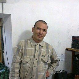 Анатолий, 39 лет, Тарасовский