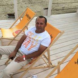 Юрий, 39 лет, Белгород