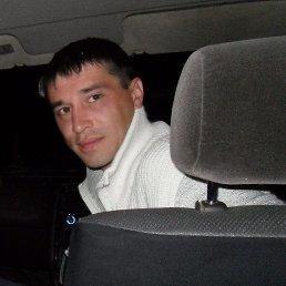 Aleksei, 20 лет, Петропавловск