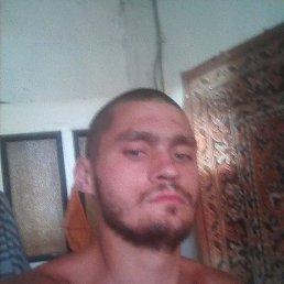 Андрей, 24 года, Антрацит