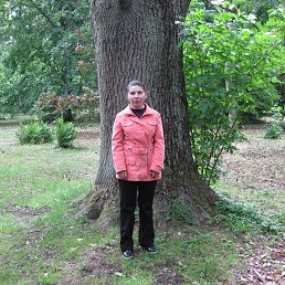 Виктория, 39 лет, Калининград