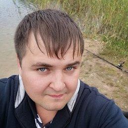Alexey, 28 лет, Гатчина
