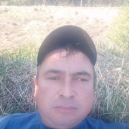 Рамиль, 37 лет, Морки