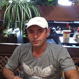 Тимур, 37 лет, Хабаровск