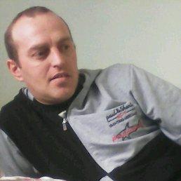 Сергей, 38 лет, Сарны