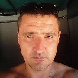 Сергей, 45 лет, Брюховецкая
