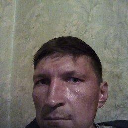 senj, 37 лет, Ливны