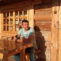 Алексей, 49 лет, Софрино