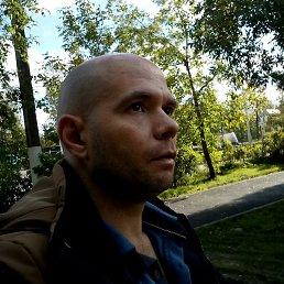 александр, 41 год, Тосно