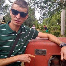 Алексей, 41 год, Северодонецк