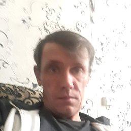 Николай, 38 лет, Ижевск