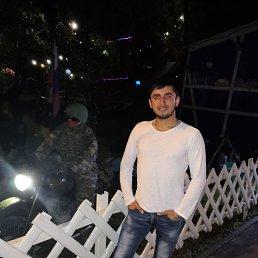 Шамиль, 28 лет, Нижний Новгород