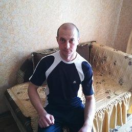 Олег, 36 лет, Белополье