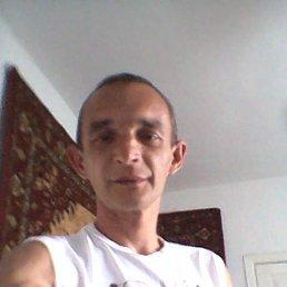Александр, 43 года, Белая Церковь