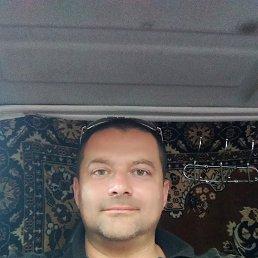 Серега, 43 года, Белая Церковь