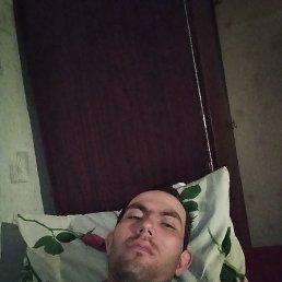 Алексей, 27 лет, Туринская Слобода