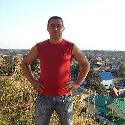 Золтан, 35 лет, Виноградов