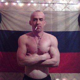 Владимир, 40 лет, Шигоны