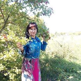 нина, 56 лет, Балашов