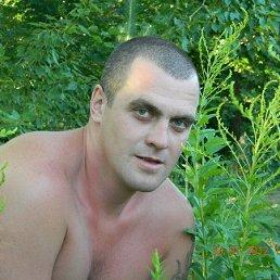 Денис, 37 лет, Пенза