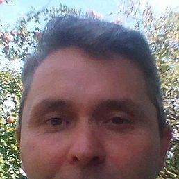 Сергей, 39 лет, Шпола