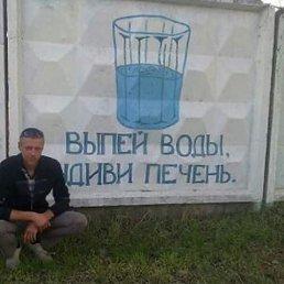 Александр, 37 лет, Северодонецк