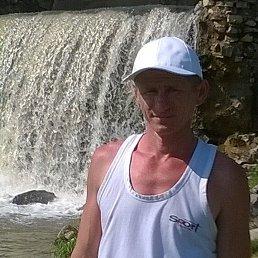 Николай, 43 года, Менделеевск