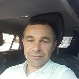Владимир, 45 лет, Винница