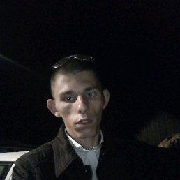 Михаил, 20 лет, Холмская