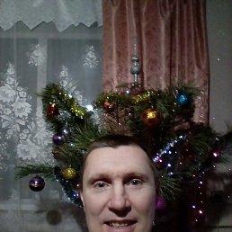 Лисица, 47 лет, Чернигов