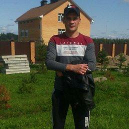 Сергей, 30 лет, Рыбинск