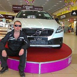 Андрей, 39 лет, Полтава