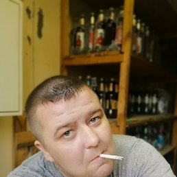 Denis, 32 года, Тихвин