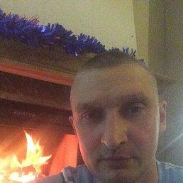 Денис, 44 года, Владивосток